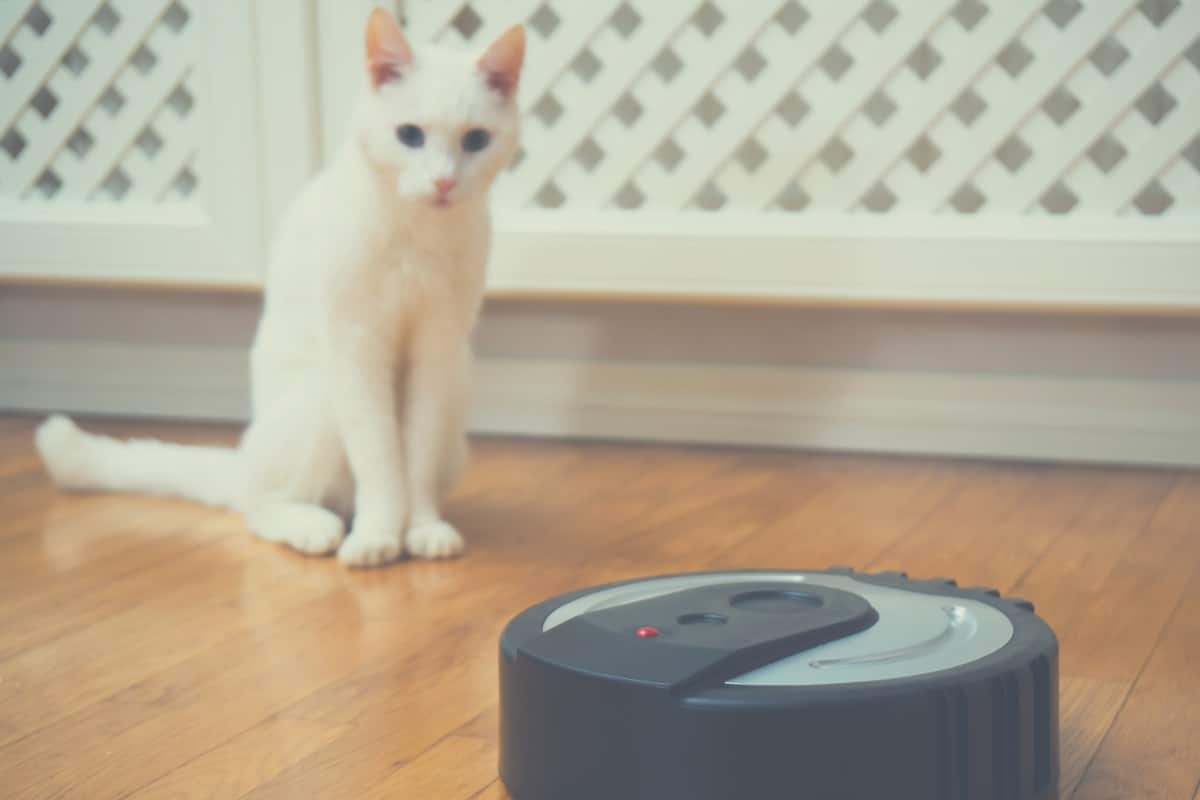 What Is The Best Roomba Robot Vacuum For Pets